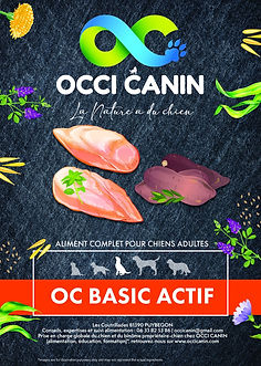 oc-basic-actif.jpg