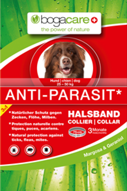 Anti-Parasit Collier, chien grand