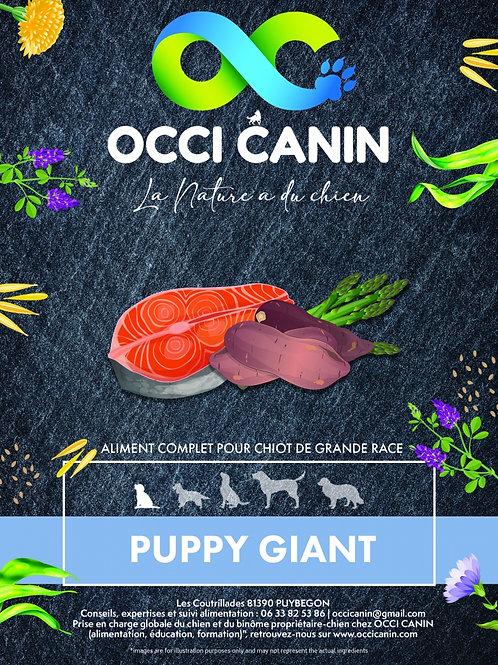 OC Puppy Giant Grain Free