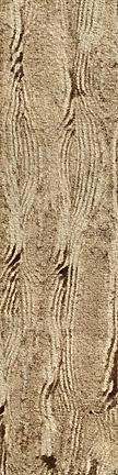 French Pine Tile.jpg