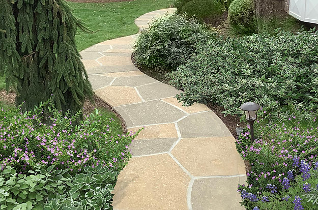Concrete Walkway like Natural Flagstone