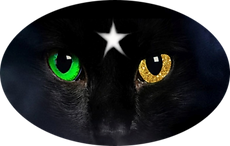Bastet Cat Logo Paint Net Optimized.png