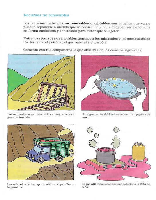 eduacionforestal2.jpg