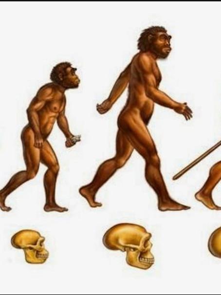 7.2- La antropogénesis y la falsa disyunción naturaleza / cultura