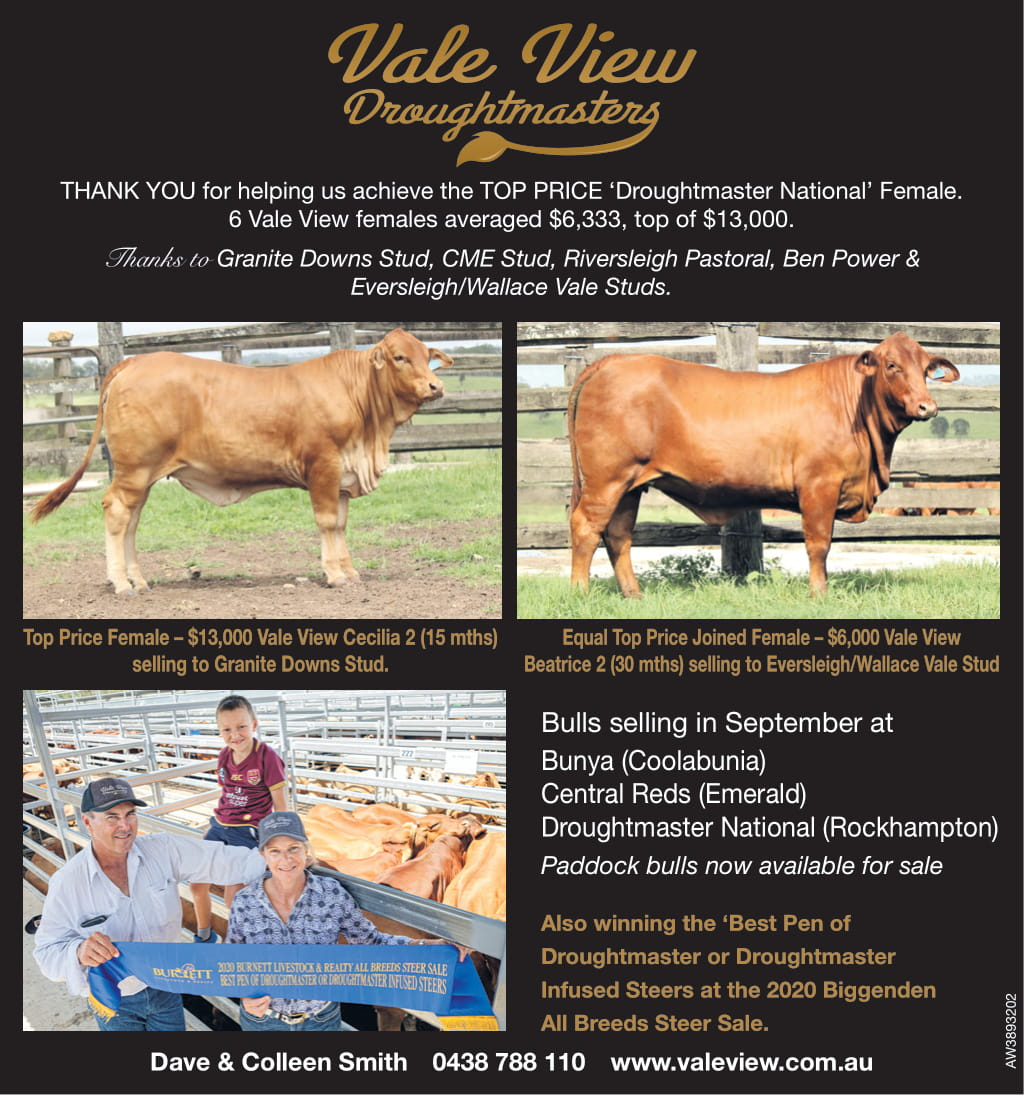QCL Post Female Sale Ad