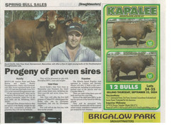 2006 DN QCL preview