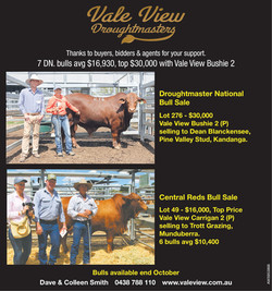 QCL Post DN Sale Ad