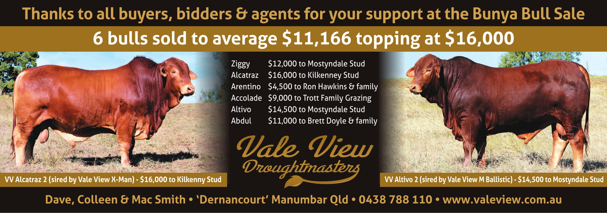 2018 Bunya QCL thank you ad