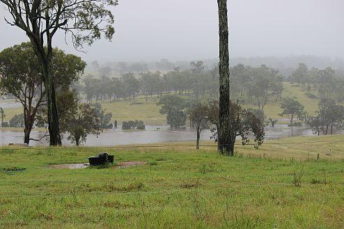 2015 flood.jpg