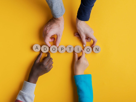 Our Adoption Process Begins