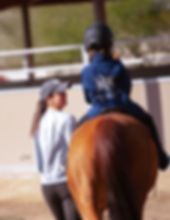 Youth & Amateur Horse Riding Lessons