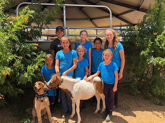 Mary Wilson Horse Riding Academy Birthday Parties for Kids