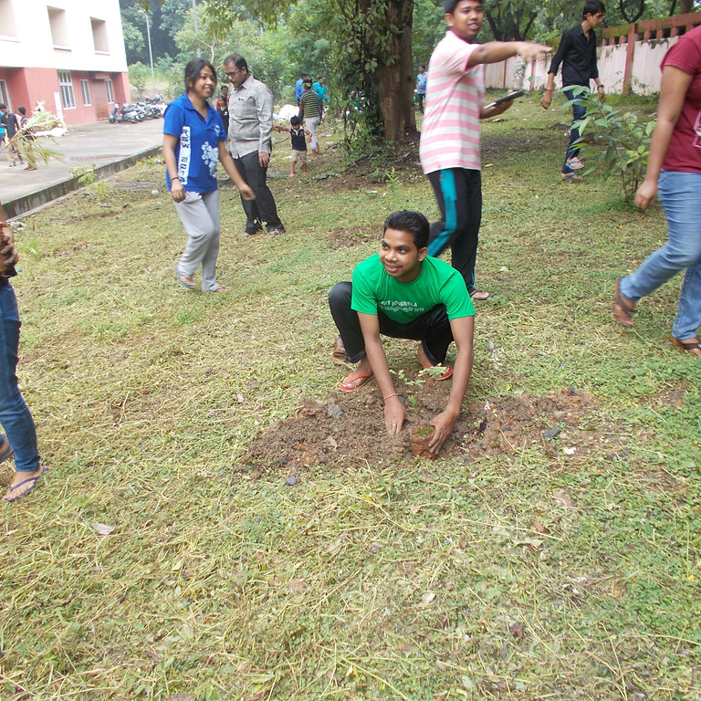Plantation Phase I (Sambalpur University)