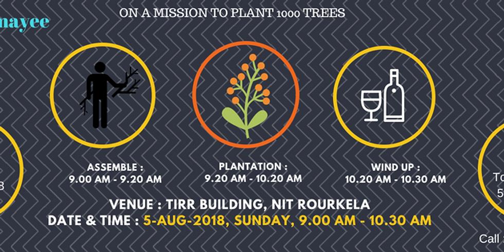 Plantation Phase I (NIT Rourkela)