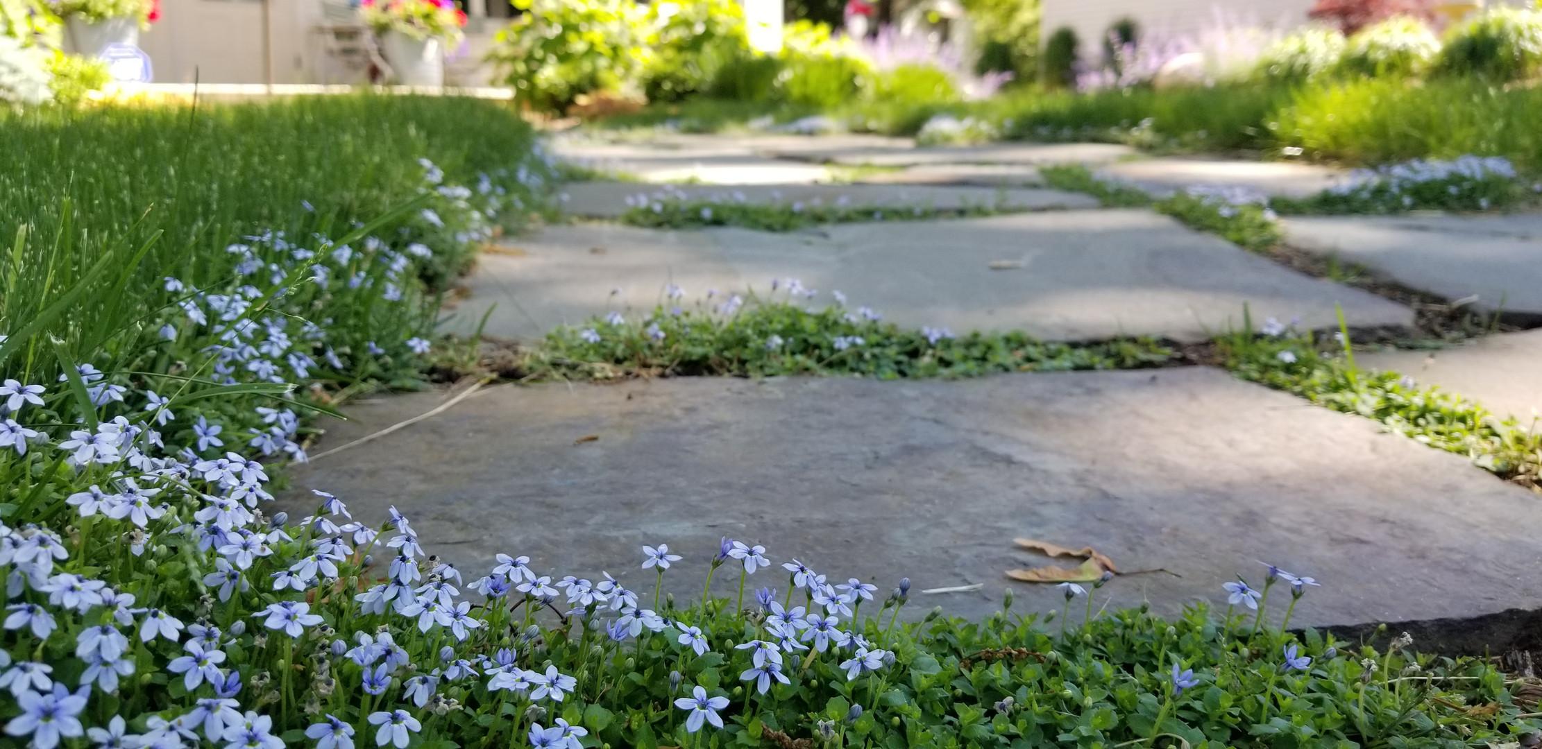 Flagstone Walkway.jpg