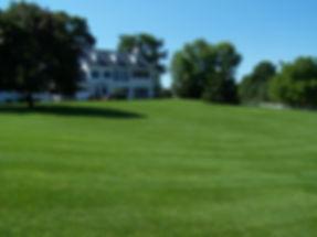 Weesies Lawn Care