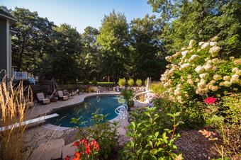Backyard Pool and Landscape