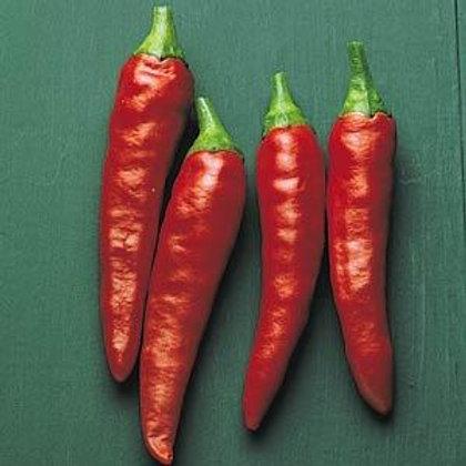 Pepper Super Chili