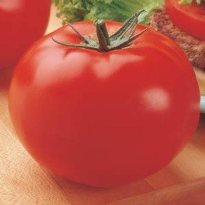 Tomato Big Beef