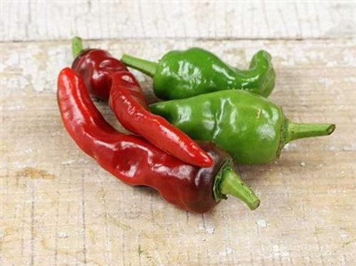 Pepper Melrose