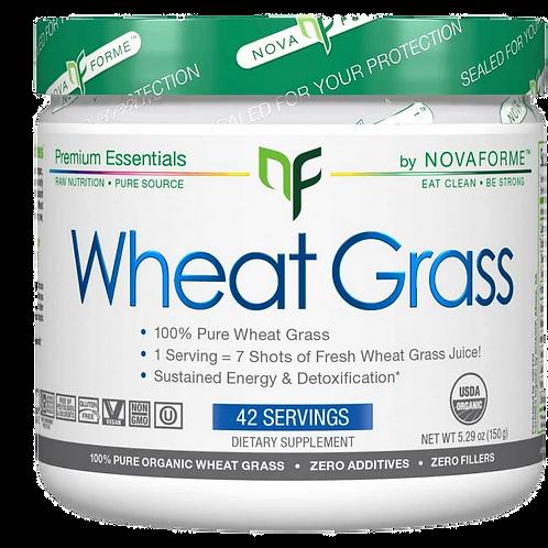 Allmax Wheat Grass powder (42 servings)