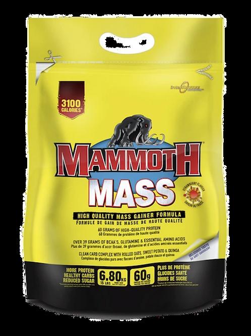 Mammoth MASS (15 lb) Bag
