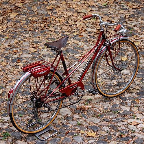 50´s Motoconfort Randonneur Luxe