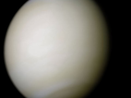 Apollo Goes To Venus: The Manned Venus Flyby
