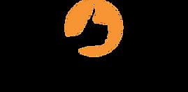 Positivo_Informática_logo.png