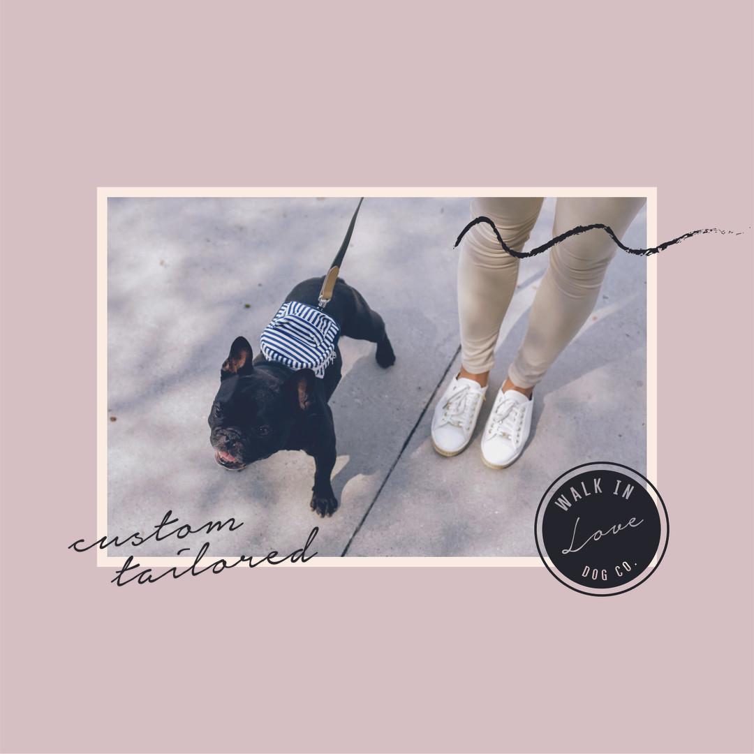 Walk in Love Dog Co.