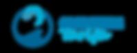 logo_gone_poziom_przezroczyste tlo_sg16-