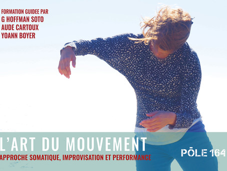 Formation Art du Mouvement