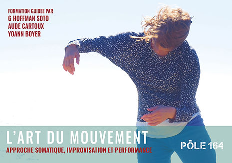 formation-l-art-du-mouvement-pole-164-ma