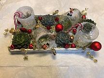verres sprayés de neige, échéveria et décorations de Noël