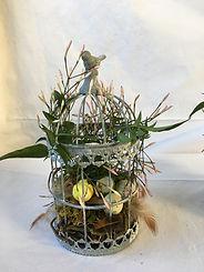 Petit nid avec jasmin et décoration