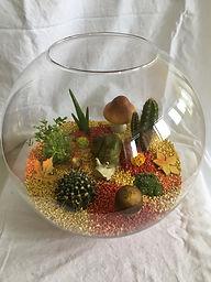 Cailloux rouge et or,cactus et décorations