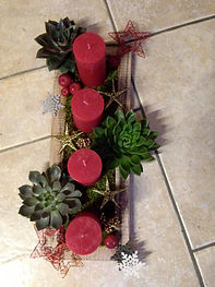 Echeverias,mousses verte,bougies et décoration de Noël