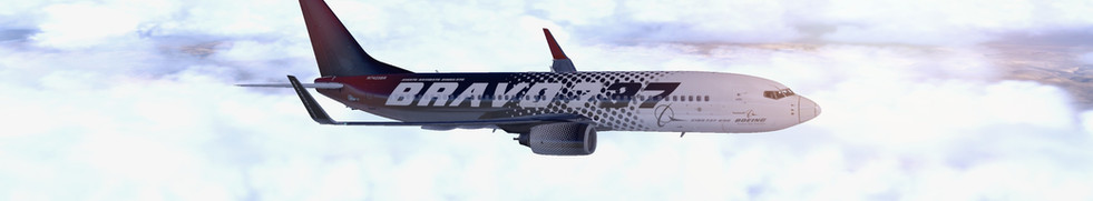 BRAVO 737 ZIOB FLYING OVER NEVADA, USA