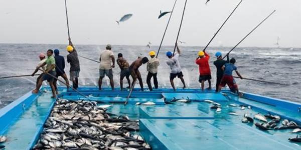 Sumber Daya Ikan Indonesia