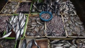 """Usung """"Traceability"""" Perikanan, Indonesia Memperoleh USD 58 Juta dari Pameran SENA"""