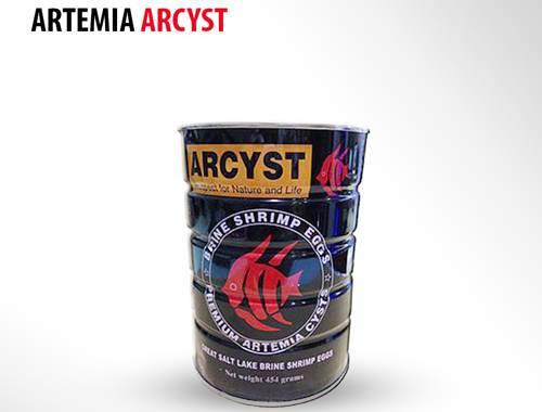 Artemia Arcyst ISW