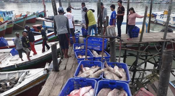 nelayan Pelabuhan Perikanan Nusantara Sungailiat