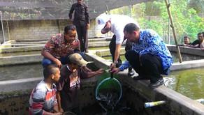 Pemerintah Banyuwangi Pacu 100 Ribu Kolam Ikan Tawar