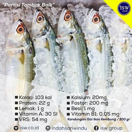 Manfaat Ikan Kembung