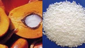 Berbagai Manfaat Stearic Acid
