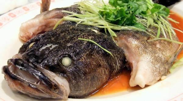 ikan malas