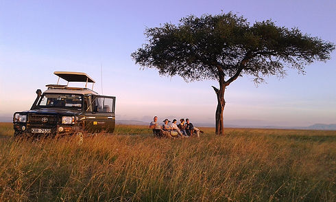 Full day game drive round Masai Mara National Reserve with a start from Maji Moto Eco Camp