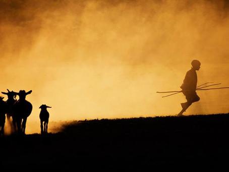 Culture of Masai (vol.2)
