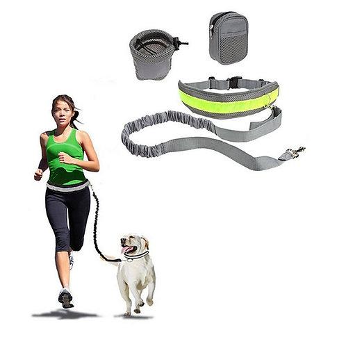Dog Hands Free Leash Slip Lead Reflective Portable Foldable Solid Colored Nylon