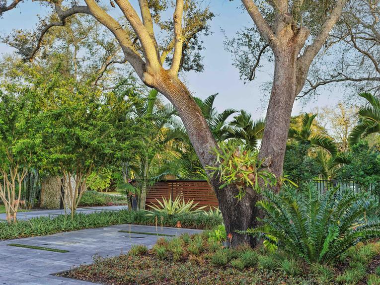 Landcape Design around Driveway at Miami